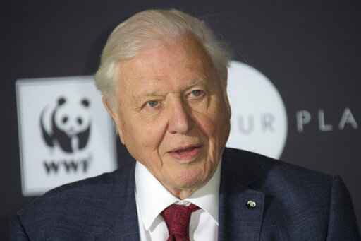 FILE - In this Thursday, Nov 8, 2018 file photo, Sir David Attenborough poses for photographers at Westminster Central Hall, London. Veteran British broadcaster David Attenborough has been appointed