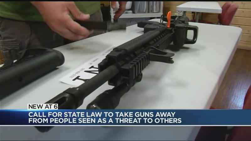 Democratic State Senators call for tougher gun laws | WHEC com