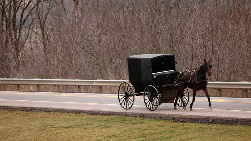 Amish Wagon Parts : Buggy car crashes on the rise in rural ny whec
