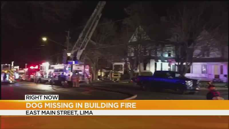 Dog missing after apartment building fire in Lima