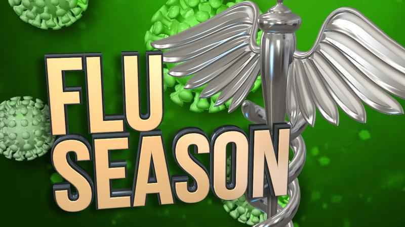 Reported Flu Cases Continue in All Areas of Virginia