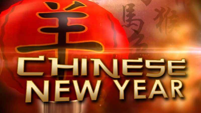 Rochester celebrates the Chinese new year