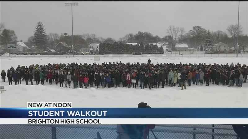 Rochester Area Students Walk Out To Honor Victims Protest Gun