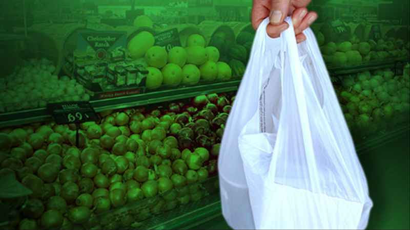 Environmental groups want statewide plastic bag ban