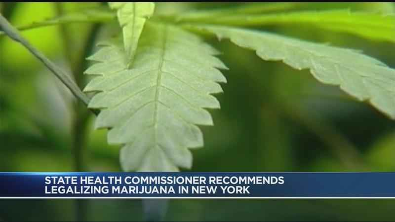 NY Health Commissioner to Recommend Recreational Pot