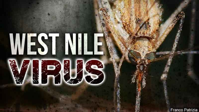 Eight West Nile cases confirmed, one death in MI this year