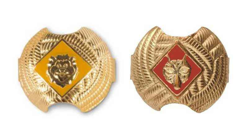 Cub Scout Neckerchief Slides Recalled Because Of High Lead