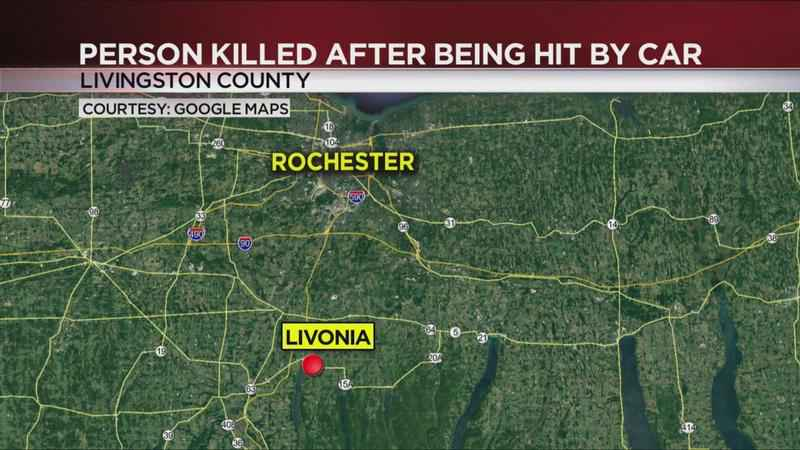 Police identify Livonia man killed after being struck by car
