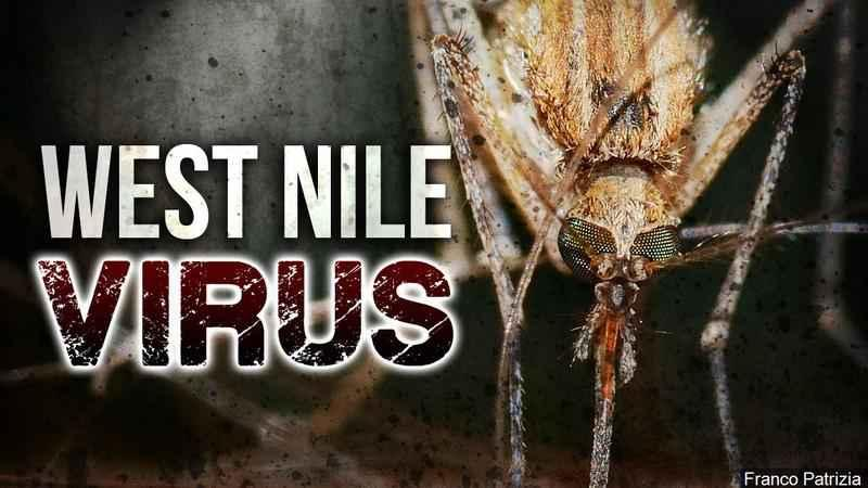 West Nile Virus case confirmed in Shaker Heights resident
