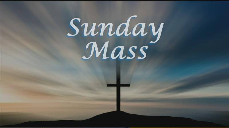Sunday Mass for 11/11