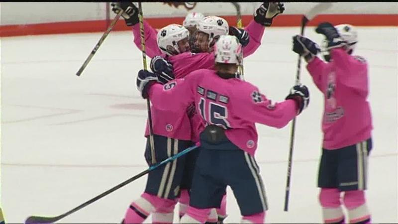 huge selection of 453de e2b25 Pittsford Panthers face Webster Schroeder Warriors in Pink in the Rink