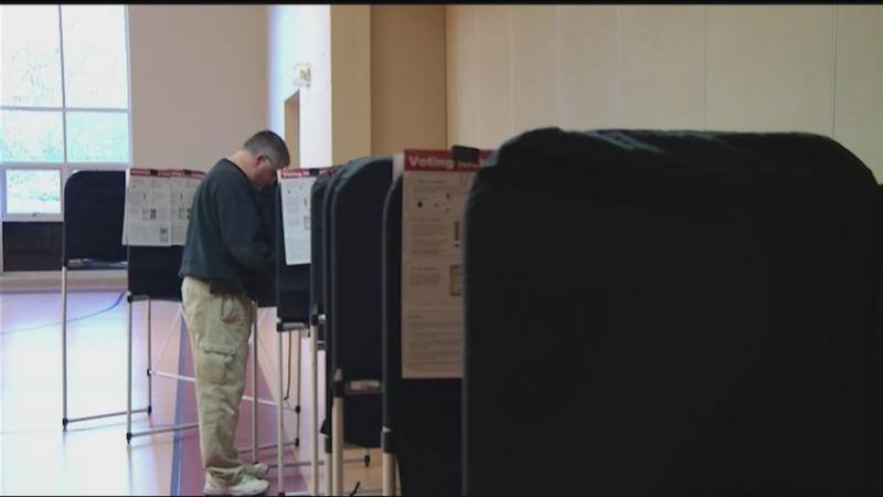 Reaction generally positive to possible voting changes