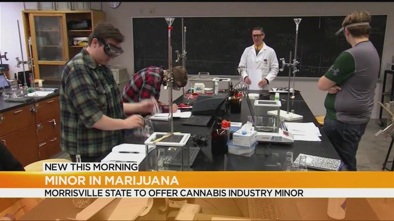 Upstate college to offer cannabis industry minor