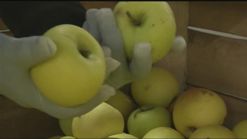 Headwater Food Hub does fresh produce in Wayne County