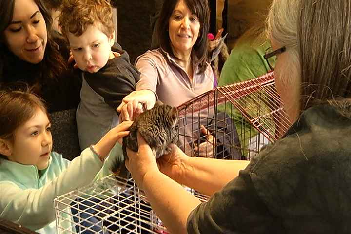 Animal Week features 'Wildlife Rockstars' at Rochester Museum and Science Center