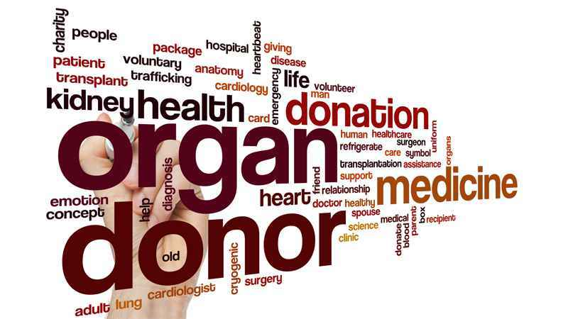 Over 5.6 million New Yorkers have registered as organ donors