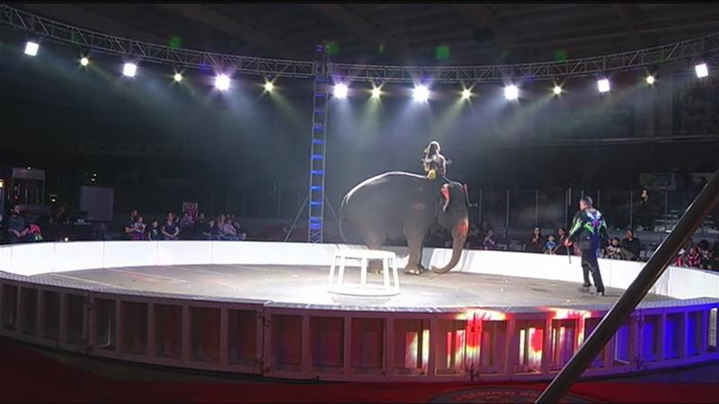 As the circus comes to town, the end of an elephant era looms