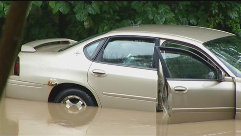 Driver rescued from submerged car in Mt. Morris