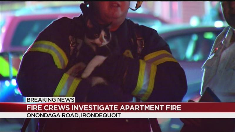 Fire damages 5 apartment units in Irondequoit