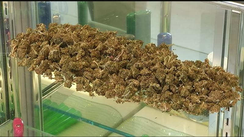 News10NBC Investigates: Here's what a non-criminal amount of marijuana would look like