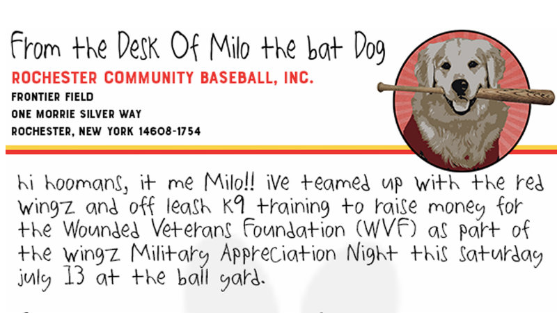 Milo the 'world's best bat dog', Red Wings raise money for Wounded Veterans Foundation