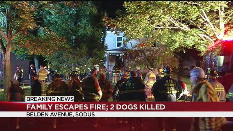 Huge fire in Sodus displaces seven; claims lives of two dogs