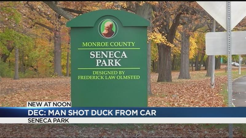 DEC: Man shot duck from car in Seneca Park
