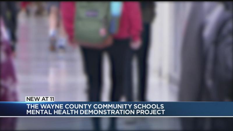 Wayne County schools get money for mental health services