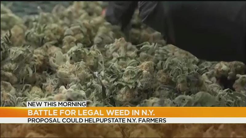 Pot legalization proposal could help rural farmers in upstate NY