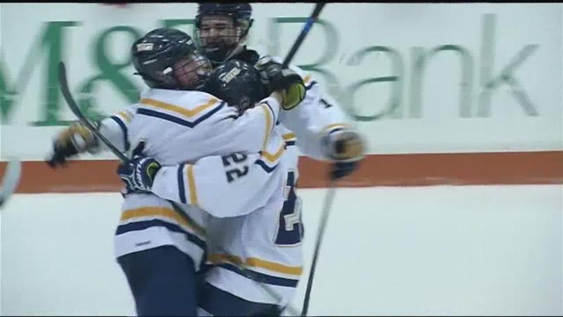 Webster Thomas and Victor take home Section V hockey titles