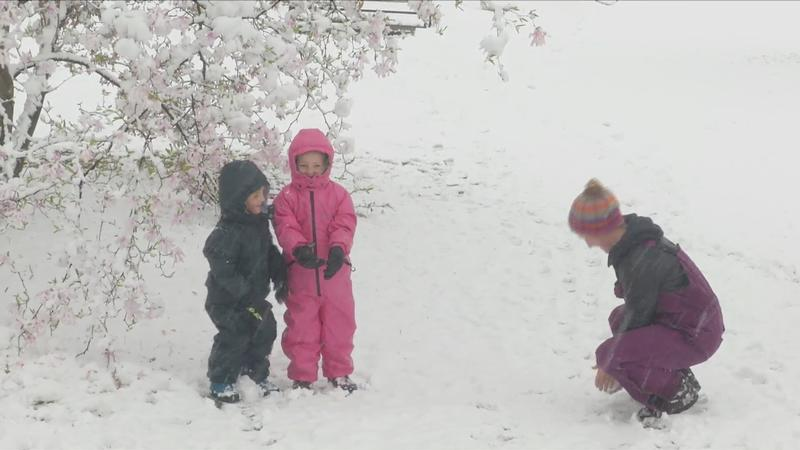 Ruth (center) and Holden (left) play with their mother, Katie Banta, in the snow at Highland Park in Rochester, April 21, 2021.