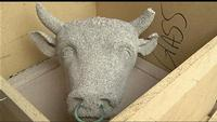 A Rochester Mystery: The Case of the Missing Bull's Head