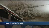 News10NBC investigates 'nightmare' apartment building