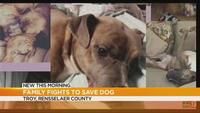 Family fights to save dog from being put down