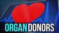 New proposal could change organ donation system
