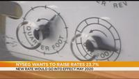RG&E, NYSEG propose rate increase to improve service