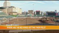 Good Question: Where are the Red Wings getting their field?
