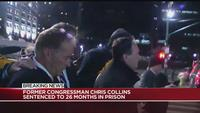 Former Congressman Chris Collins (R-NY 27) walking out of court after being sentenced on Friday night