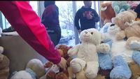 'Teddy Bear Trot' gathers cuddly critters to help trauma victims