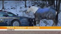 State police respond to standoff over 'horsepower' in Steuben County