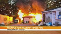 Multiple pets dead after house fire in Livingston County