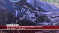 Driver in horse and buggy crash that injured family of 7 charged